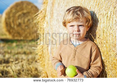 Funny Cute Little Kid Boy Eating Organic Apple On Late Summer Day On Wheat Field