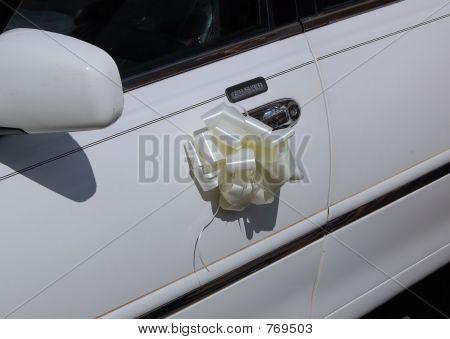 Decorated Limousine door