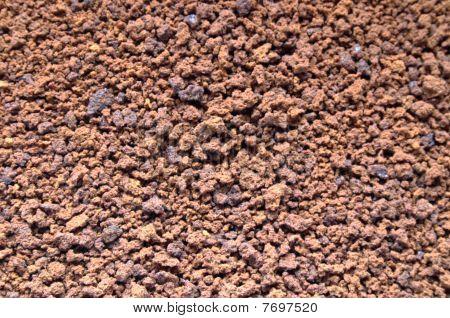 Coffee Grains Closeup