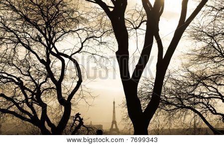 Paris Contrast