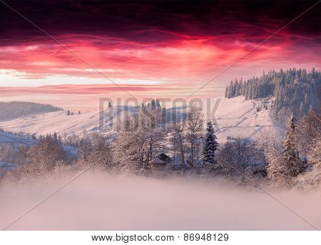 Foggy Winter Landscape In Mountain Village Ander The Dark Red Sky