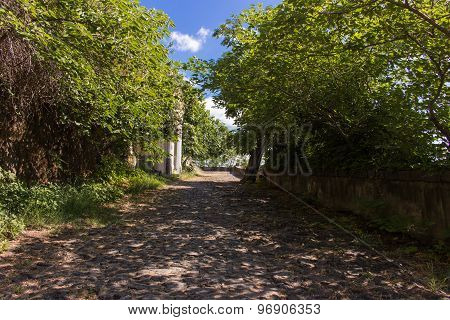 Countryside Track