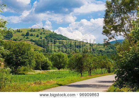 Countryside In Hunedoara County