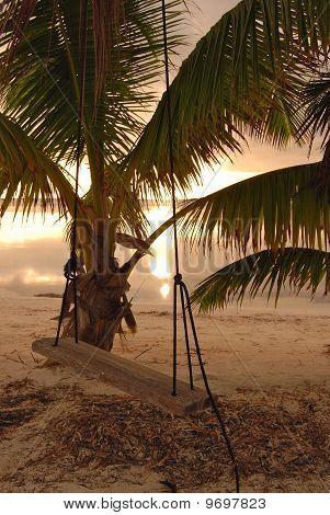 Wooden swing on beach in Belize