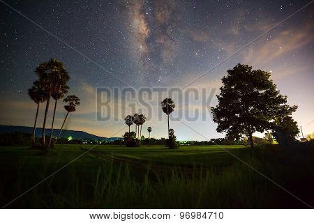 Silhouette of Tree and Milky Way with cloud, Long exposure photograph poster