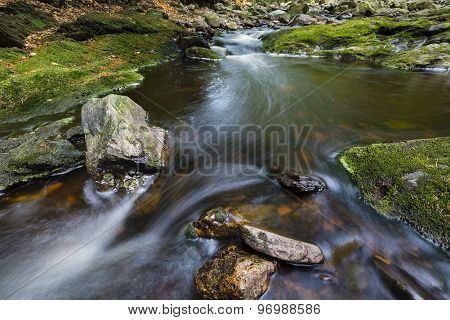 Low angle view of a rapids in a small mountain stream in the High Fens Ardennes Belgium running between green moss covered rocks. poster