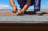 gardener renew roof of summer garden house with tar paper shingles poster
