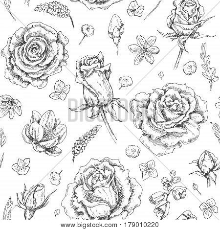 Hand drawn doodle flowers and floral elements. Seamless monochrome pattern with scattered roses and buds. Black and white coloring page. Vector sketch.