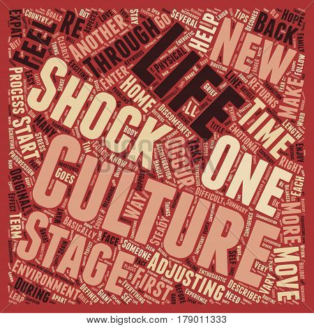 So what is culture shock text background wordcloud concept