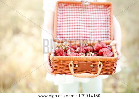 Girl holding basket with strawberries outdoors. Healthy lifestyle. Summer time.