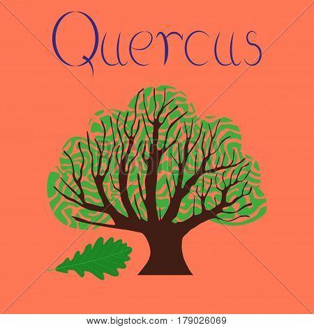 flat illustration on stylish background plant Quercus
