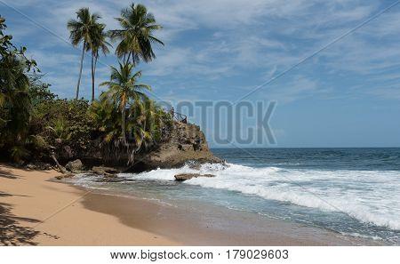 Coast with rock at Punta Manzanillo, Gandoca Manzanillo National Wildlife Refuge, Costa Rica