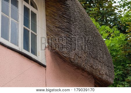 Fragment of a typical Devonian roof made of straw. Exeter. Devon. England