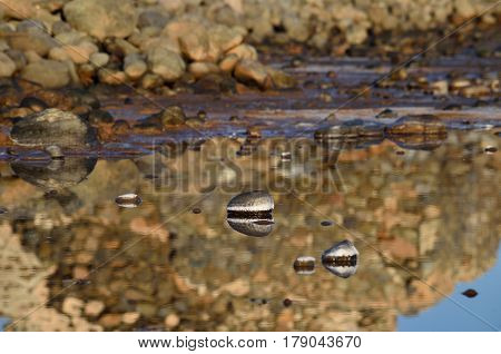 Reflexes in lagoon of saltwater next to the sea
