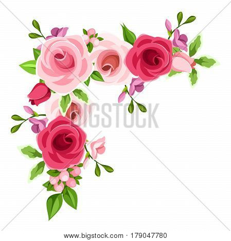 Vector corner background with red, pink and purple roses and freesia flowers.