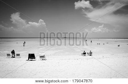 black and white beach landscape on castaway kay island during a cruise