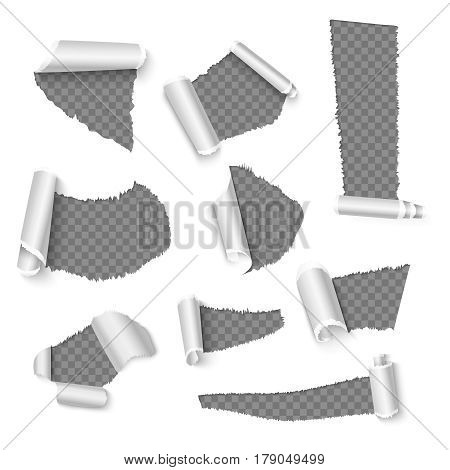 Torn papers with curls, holes in the paper vector decoration. Paper torn holes collection, ragged bent paper illustration