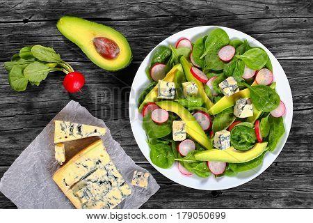 Avocado, Gorgonzola Cheese, Spinach, Radish Salad