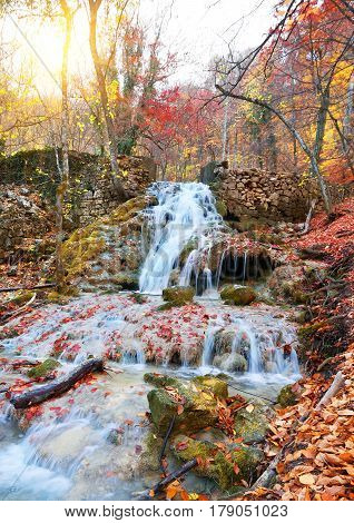 Autumn mountain river in a colorful forest