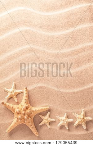 five sea starfish in rippled sand. Star fish texture background.