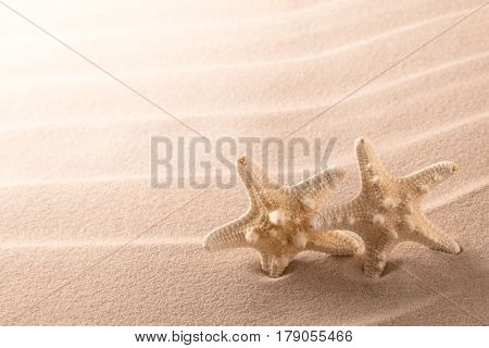 sea starfish in rippled beach sand. Star fish with copyspace in background. Summer vacation concept.