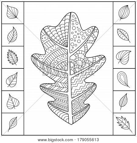 Uncolored Patterned Oak Leaf and Different Simple Leaves. Design of Page for Coloring Book. Set of Black and White Isolated Objects.