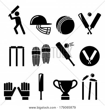 Cricket bat, man playing cricket, cricket equipment - sport icons set