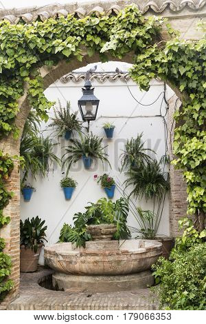 Cordoba (Andalucia Spain): court (patio) of a historic typical house with plants and flowers