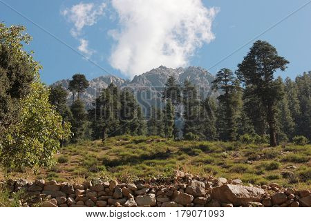 Beautiful mountains with blue skys green trees in swat valley kpk Pakistan