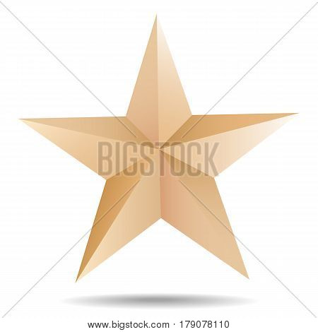 Vector Paper Star Shape Origami Object