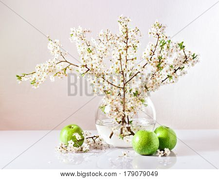 Beautiful branches of a blossoming apple tree in a glass vase with water and green apples