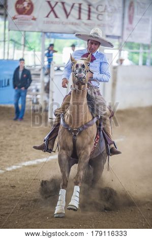 GUADALAJARA MEXICO - SEP 01 : Charro participates at the 23rd International Mariachi & Charros festival in Guadalajara Mexico on September 01 2016.