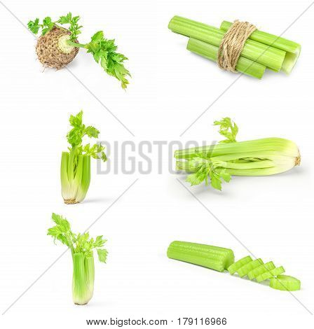 Collection of celeriac isolated on a white background cutout