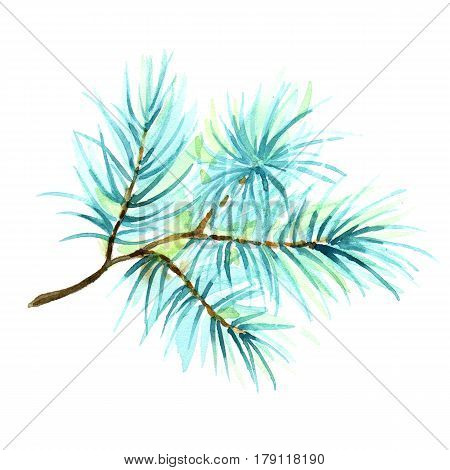 Watercolor illustration of a branch of spruce, pine, fir-tree, isolated on white background. Fir tree branch hand-drawn for your design and decor.