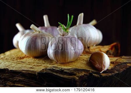 garlic whole with the sprout and a clove of garlic on the stump