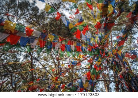 Colorful Waving Prayer Flags