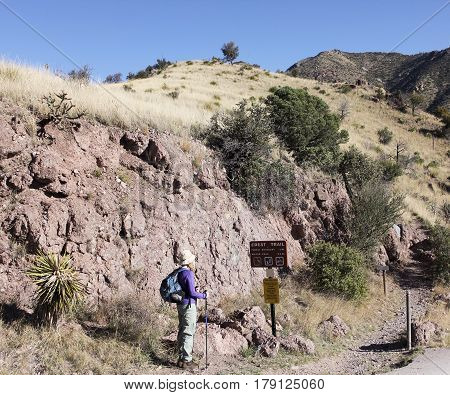 SIERRA VISTA, ARIZONA, MARCH 25. The Huachuca Mountain Crest Trail on March 25, 2017, near Sierra Vista, Arizona. A Hiker at the Huachuca Mountain Crest Trail Trailhead near Sierra Vista, Arizona.