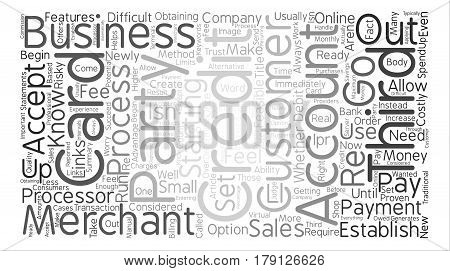 Third Party Credit Card Processors Word Cloud Concept Text Background