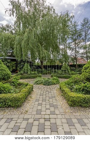 Symmetric Plant Arragement In Garden