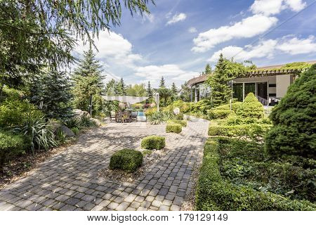 Elegant Garden With The Paved Path