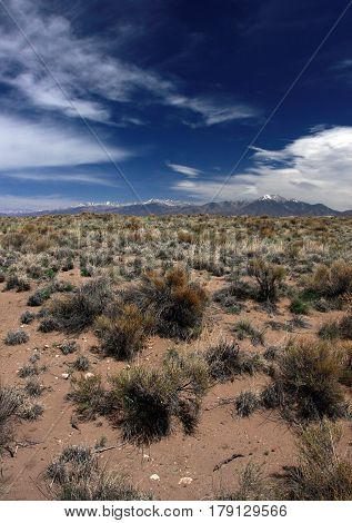 Sage brush and sand on the high prairie of the San Luis Valley near Alamosa, CO