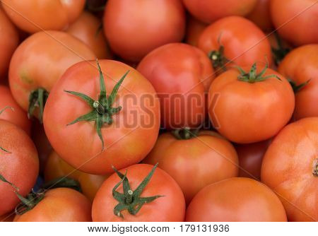 Fresh red healthy tomatoes on a fruit market for sale