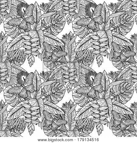 Tropical bouquet seamless pattern with flowers, leaves and butterfly. Coloring page of tropic floral composition isolated on white background. Black and white exotic wallpaper.