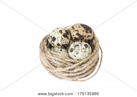 Eggs have been valuable foodstuffs since prehistory in both hunting societies and more recent cultures where birds were domesticated.