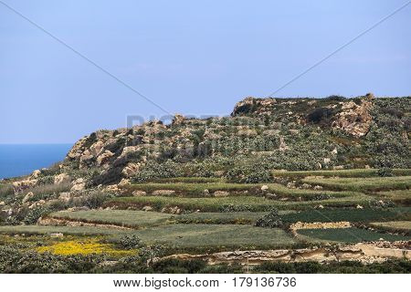 A typical countryside view in the Maltese Islands