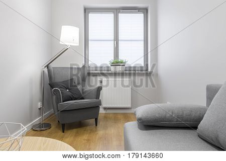 Living Room With Grey Armchair