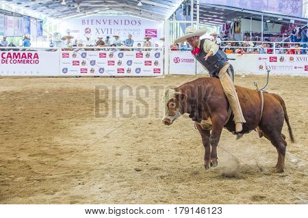 GUADALAJARA MEXICO - SEP 01 : Charro Participates in a bull riding Competition at the 23rd International Mariachi & Charros festival in Guadalajara Mexico on September 01 2016.