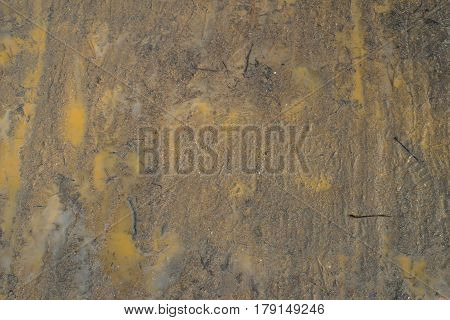 Mud texture with yellow dirty rain water. Brown wet spring earth with needles of fir-trees and puddles. For backgrounds, prints, designs.
