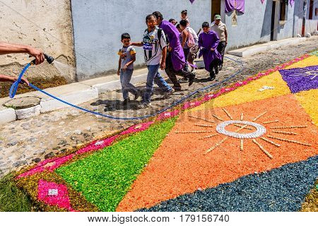 Antigua, Guatemala - March 26 2017: Local sprays water on dyed sawdust procession carpet during Lent in colonial town with most famous Holy Week celebrations in Latin America.