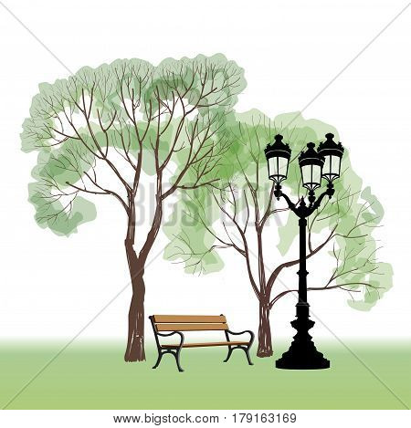 Bench in park with tree and streetlamp. City park landscape.  hand drawn sketch.